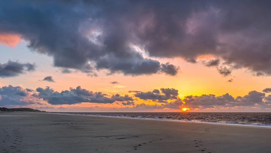 camping de zeeuwse kust renesse