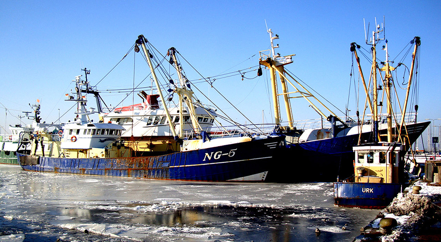 Haven Urk in de winter