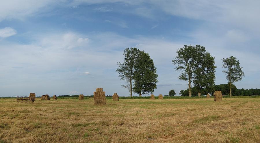 Polder Leutingewolde Drenthe